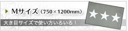 Mサイズ(750x1200mm)